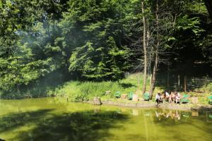 cabana izvoranu buzau lac