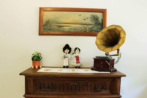 cabana izvoranu buzau camera 3 fonograf-581x387